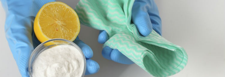 7 DIY Natural Cleaning Recipes for Florida Homes